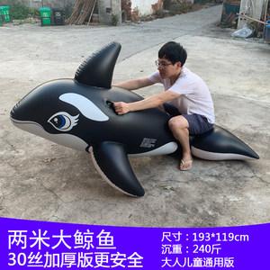 超大游泳圈充气坐骑大鲨鱼水上玩具成人大人海豚黑鲸鱼冲浪网红