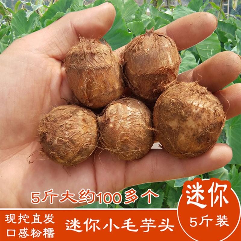 云南毛芋头5斤小芋头芋艿子香芋头新鲜农家自种现挖有机蔬菜包邮