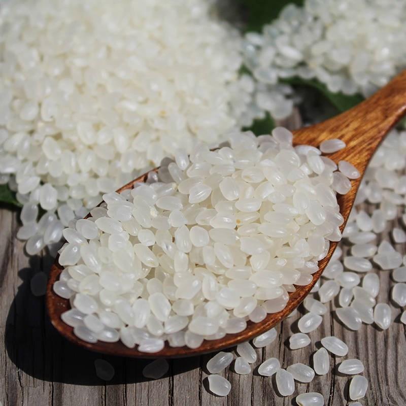 现货东北大米新米珍珠米东北吉林碱地粳米圆粒5kg10斤