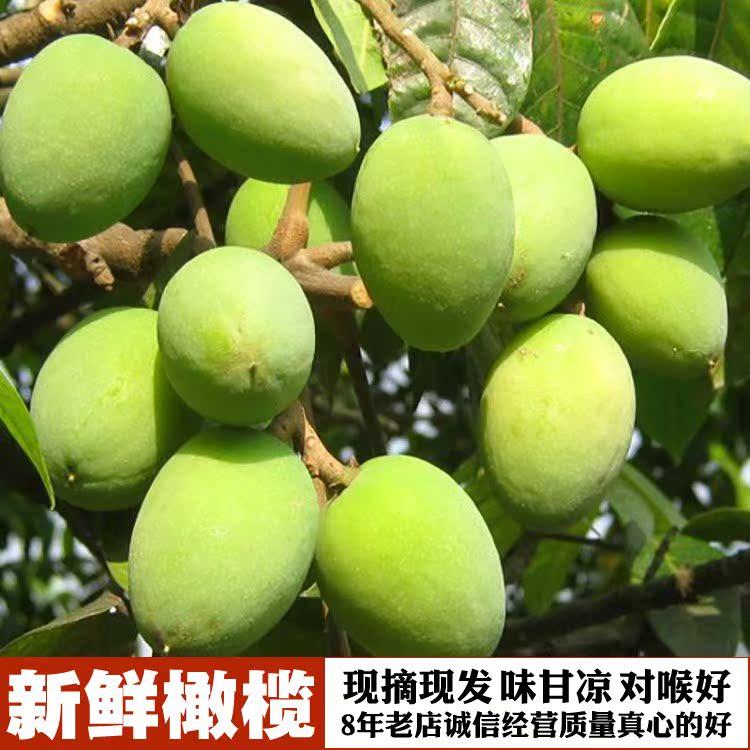 广东茂名福建高州特产新鲜黄榄白榄甘柑榄正宗檀香青橄榄500g包邮
