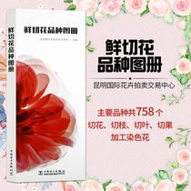 山田幸子花藝園藝鮮花朵花卉花名由來常用花語開花時節顏色分類種植信息手冊書籍花語大全書種常見四季花卉手冊184花與花語