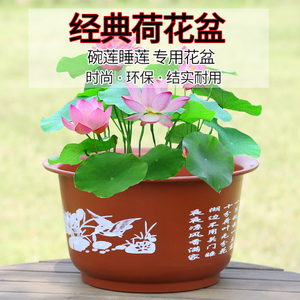 无孔荷花盆加厚加大花盆仿陶瓷碗莲睡莲花盆荷花水培绿植塑料花盆