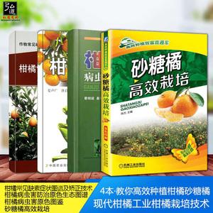 4本种植技术大全教材病虫害与柑橘