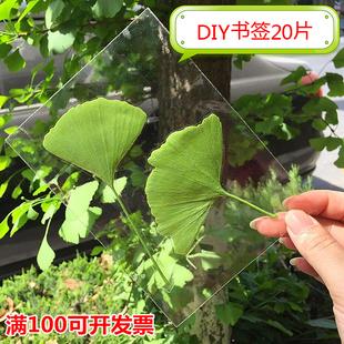 树叶标本膜5寸冷裱膜照片书签塑封防水护卡A4DIY纯手工制作材料
