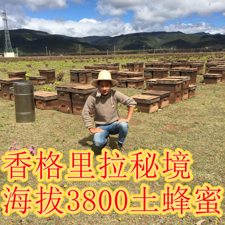 云南高原香格里拉大理纯野生土蜂蜜纯天然农家自产1000克宝宝包邮