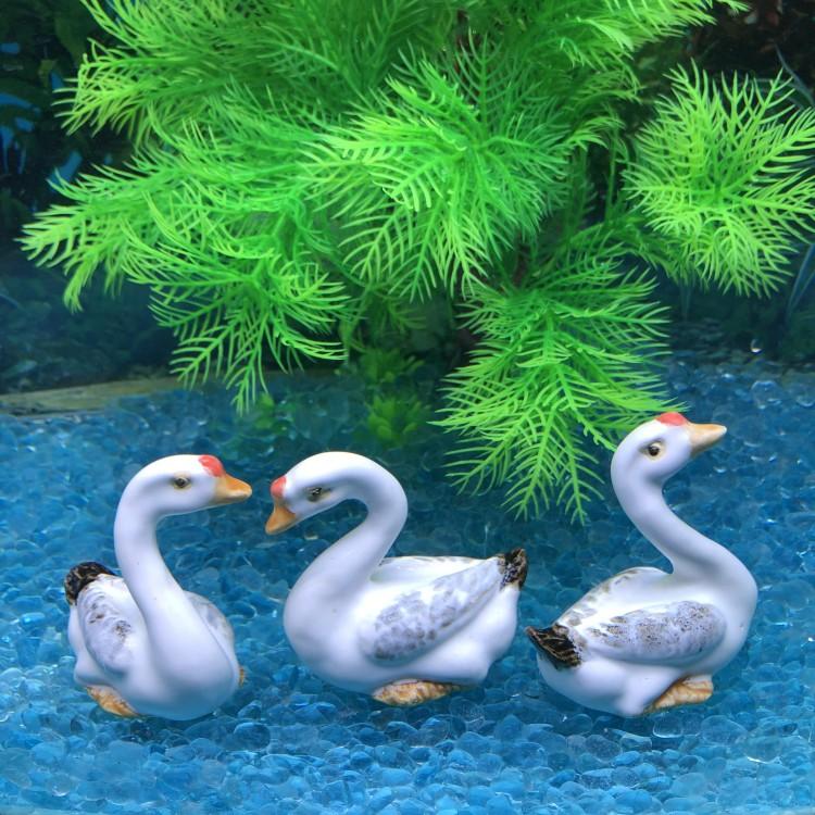Креативные аквариумы Артикул 582853951864