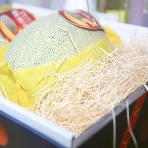 水果填充物 拉菲草碎纸丝陶瓷玻璃物填充 礼盒包装喜糖填充纸条