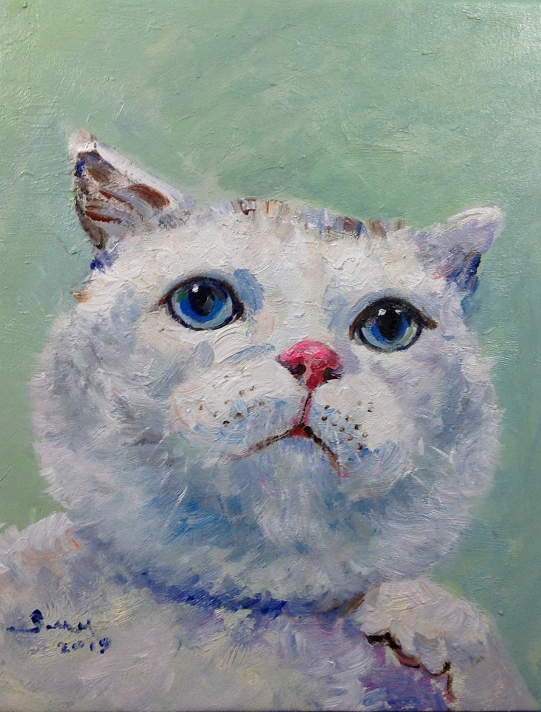 包郵無框純手繪油畫動物油畫貓咪狗狗系列店現代簡約玄關客廳掛畫