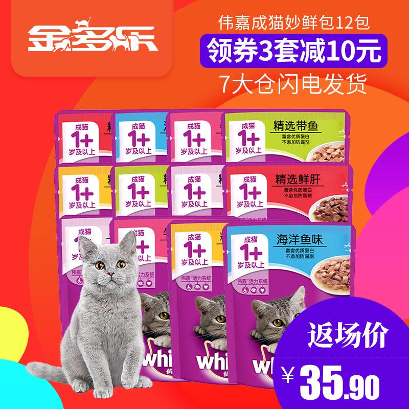 Большой хорошо становиться кот замечательный свежий пакет 12 пакет размер хорошо становиться коты бак глава кот нулю еда мокрый зерна становиться кот замечательный свежий пакет кот зерна