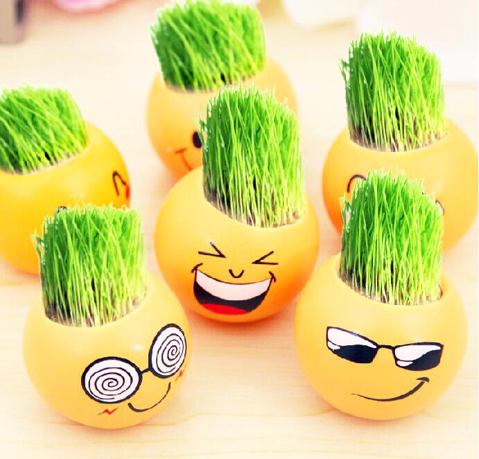 草头娃娃长草小盆栽小草迷你植物创意幼儿园DIY种植儿童可爱礼物
