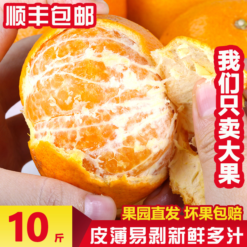 Guangxi Wogan first class big fruit 10 jin whole box oranges Baba oranges ugly eight strange oranges fresh oranges