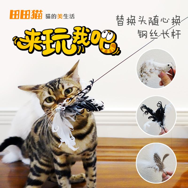 田田猫の長い棒の綱渡りの羽は猫の棒を使って代わりに猫用品の猫のおもちゃを交換します。