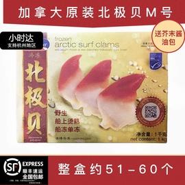 加拿大北极贝刺身M号1kg大号海鲜日料即食鲜活冷冻原装包邮未切片图片