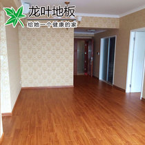 Dragon Leaf 9512 Home Warm geothermal special waterproof wear-resistant multi-layer Parquet factory Direct Sales 15mm