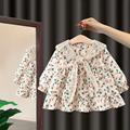 女宝宝连衣裙女童2021新款洋气韩版2婴儿秋装1周岁生日衣服公主裙