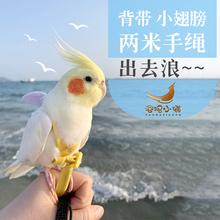 包邮 鸟用飞行绳放飞绳牵引绳外出绳飞行背带遛鸟绳鸟用品定制一件