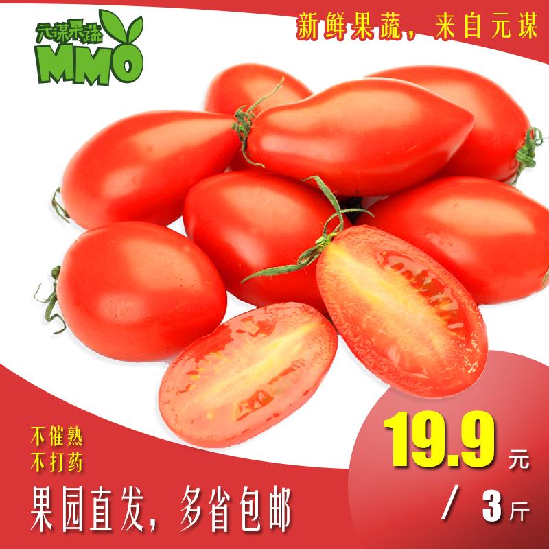云南农家自产新鲜圣女果西红柿樱桃小番茄露天种植自然熟三斤包邮