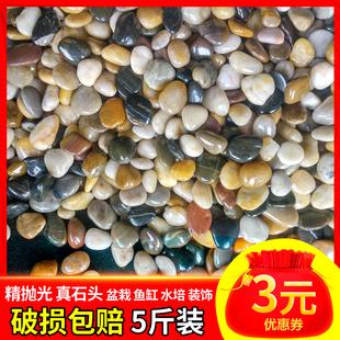 鹅卵石雨花石原石天然小石子鱼缸花盆鹅软石庭院装饰园艺五彩石头