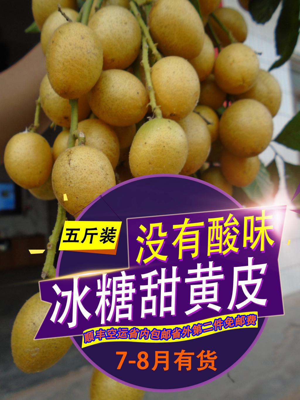 郁南冰糖甜黄皮果没有酸味消食化痰广东省内顺丰包邮孕妇新鲜水果