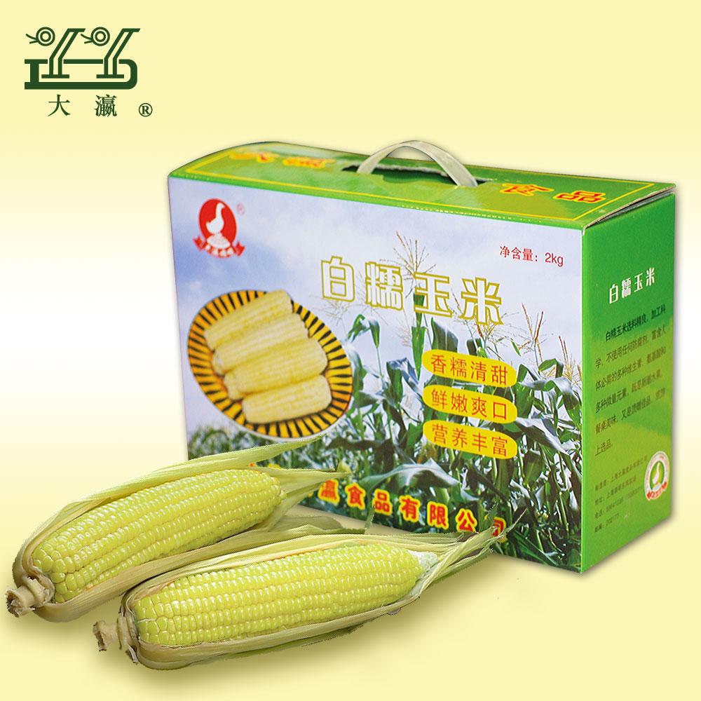 大瀛白糯玉米2kg 大玉米棒子 玉米粒 粘鮮崇明特產