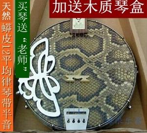 海浪乐器广东四弦秦琴乐器演奏边助玫瑰木民族乐器精选蟒蛇皮正品