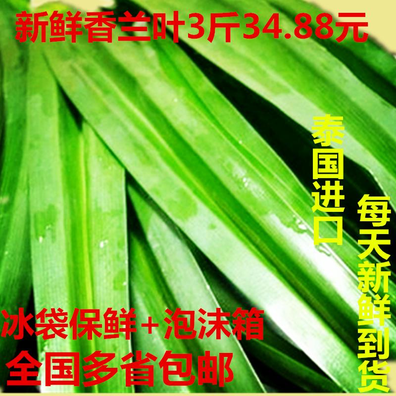全国包邮 泰国 新鲜香兰叶 班兰叶 斑斓叶 千里香  3斤超值份量