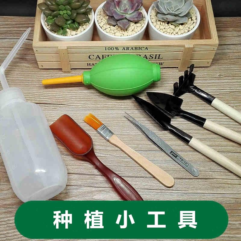 Больше мясо семена завод набор инструментов сад искусство инструмент три образца микро пейзаж семена цветок лопата ятаган горшок лить цветок лейка