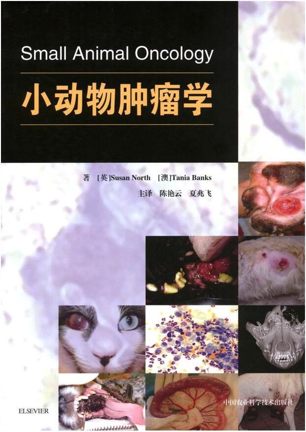 小动物肿瘤学 陈艳云 夏兆飞主译 犬猫肿瘤学  宠物医学书籍  小动物癌症治疗       爱思唯尔引进图文并茂