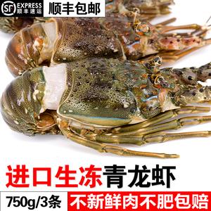 冷冻海鲜水产鲜活进口波士顿青龙虾