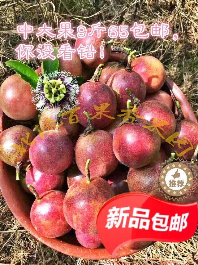 广西特产北流纯天然百香果新鲜多汁西番莲5斤大果现摘包邮