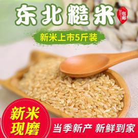 糙米 东北糙米新米玄米农家发芽米胚芽米健身脂减饭五谷杂粮5斤装