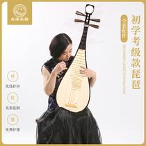 练习乐器大人8973考级演奏琵琶琵琶红木星海专业qj高档