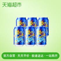 24瓶装青岛棕金青岛啤酒296ml金质小瓶整箱畅饮
