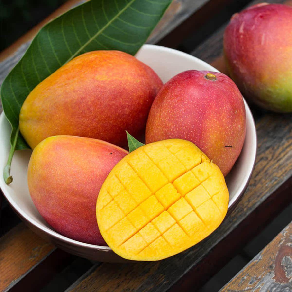四川吉禄芒果 热带新鲜水果 现采现摘  净含量5斤装 包邮