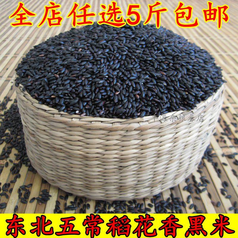 黑米 东北农家自产正宗黑香米  新米无染色 杂粮粥 黑大米500g