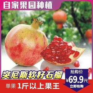 河南荥阳突尼斯软籽石榴新鲜大果红心薄皮非无子甜水果6个约6斤装