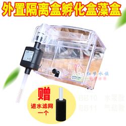 建荣BB10带水泵外挂式孵化器鱼缸鱼产房下崽隔离盒箱孔雀鱼繁殖盒