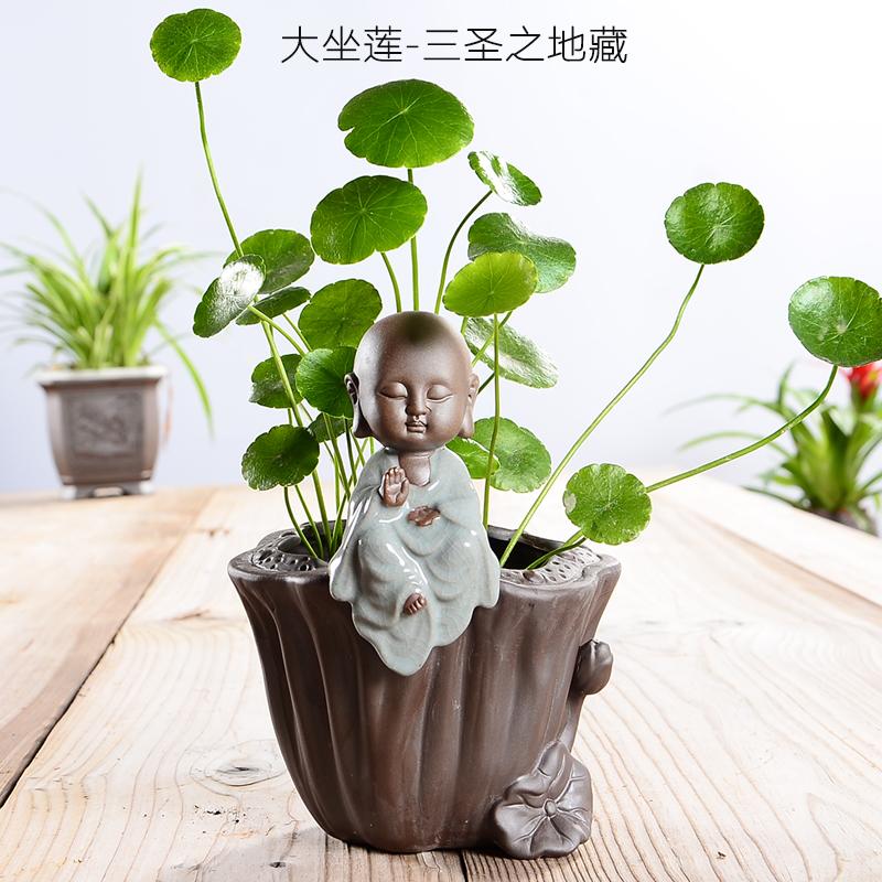 Монеты трава деньги трава гидропоника цветочный горшок cциндапсус золотистый цветочный горшок творческий чай портить цветочный горшок украшение чай портить гэяао керамический цветок бассейн