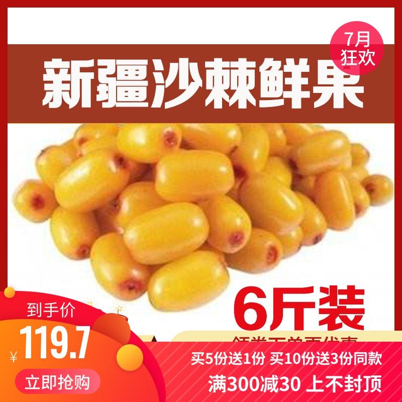 新疆特产新鲜沙棘果天然野生特级沙棘鲜果6斤特价包邮 做酵素榨汁
