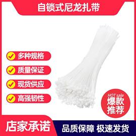 优质自锁式尼龙塑料扎带3 100 20 15 30cm固定电线捆扎线束带强力