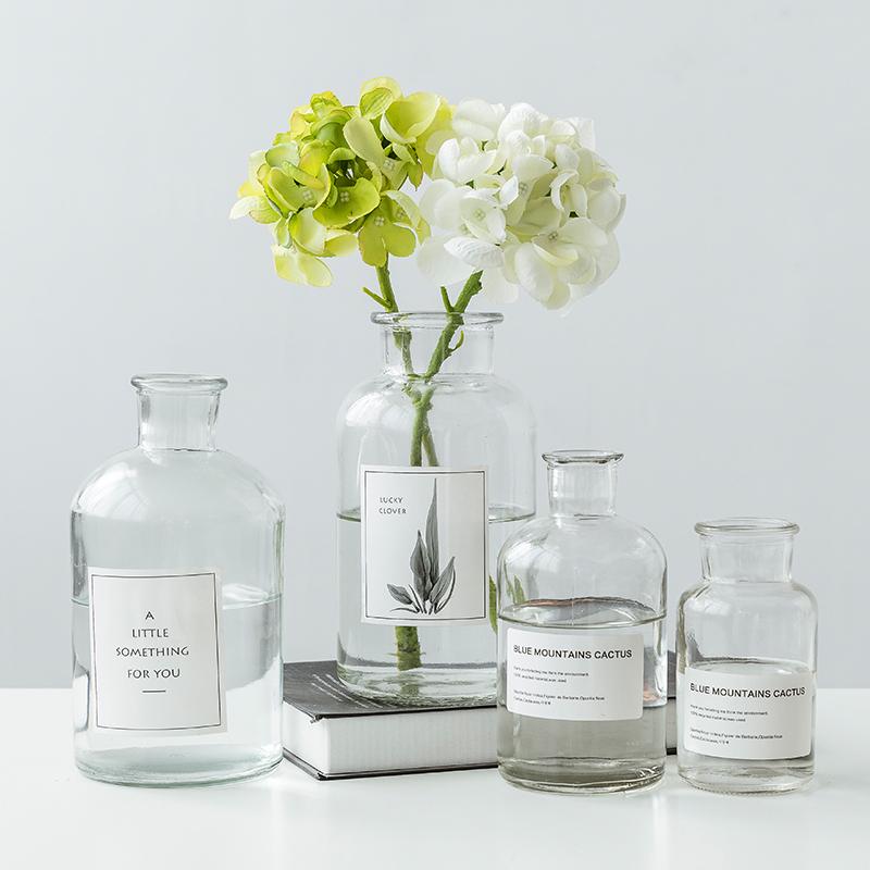花瓶ins风北欧透明玻璃创意简约干花插花客厅网红装饰水养摆件小