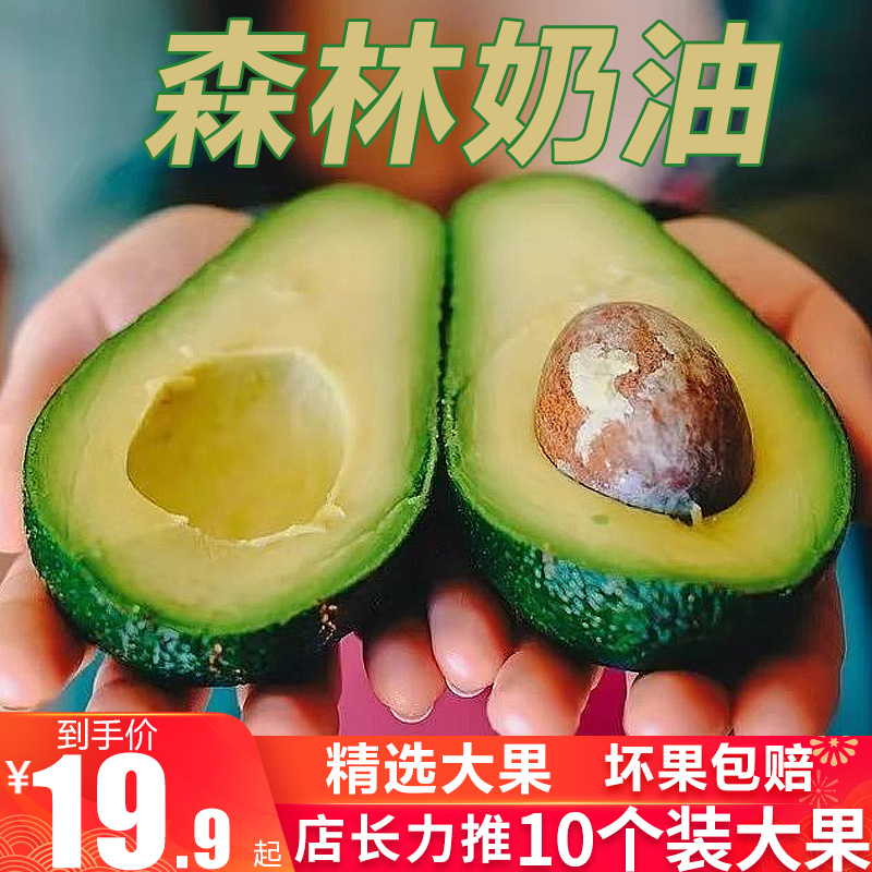 アボカドの熱帯特産品としては珍しい野菜や果物を入れた新鮮な果物を包んでいます。