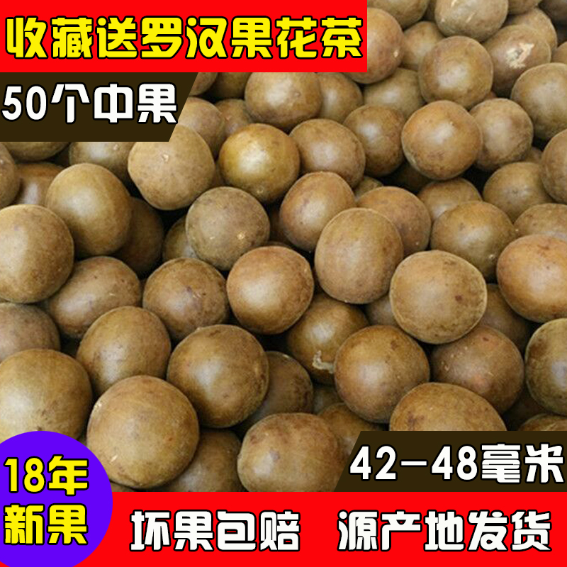 新鲜罗汉果 广西桂林特产永福罗汉果罗汉果50个包邮散装干果花茶