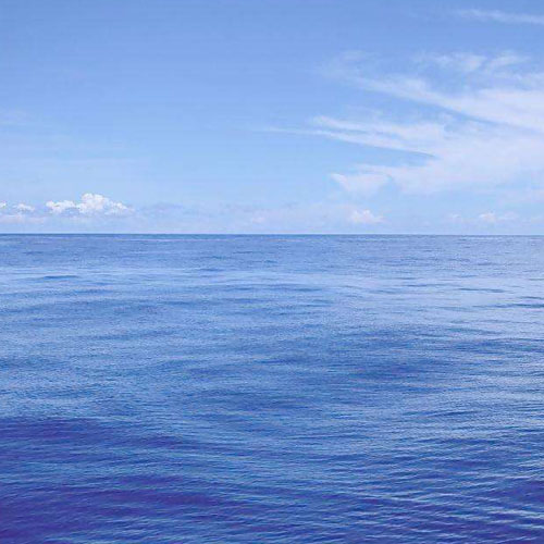 6个包邮 海洋 Ocean 大海  香味图书馆正品Demeter香水2ml有喷头