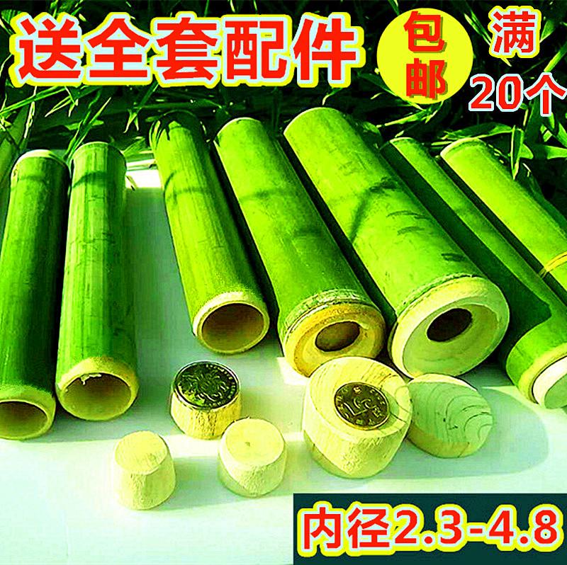 Скорпион бамбуковый бамбуковый рис бамбуковый барбекю бамбуковый верх из фабричной розетки
