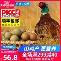 小鸡蛋新鲜山鸡蛋30枚满月喜蛋礼盒包邮营养1顶3深山土野鸡蛋土