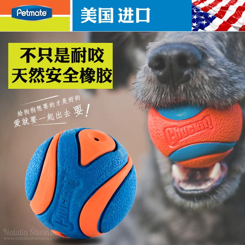 petmate耐咬宠物玩具狗狗玩具磨牙发声玩具球幼犬金毛泰迪狗用品图片