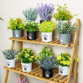 仿真绿植摆件小盆栽北欧ins风桌面迷你创意植物假花装饰客厅盆景图片