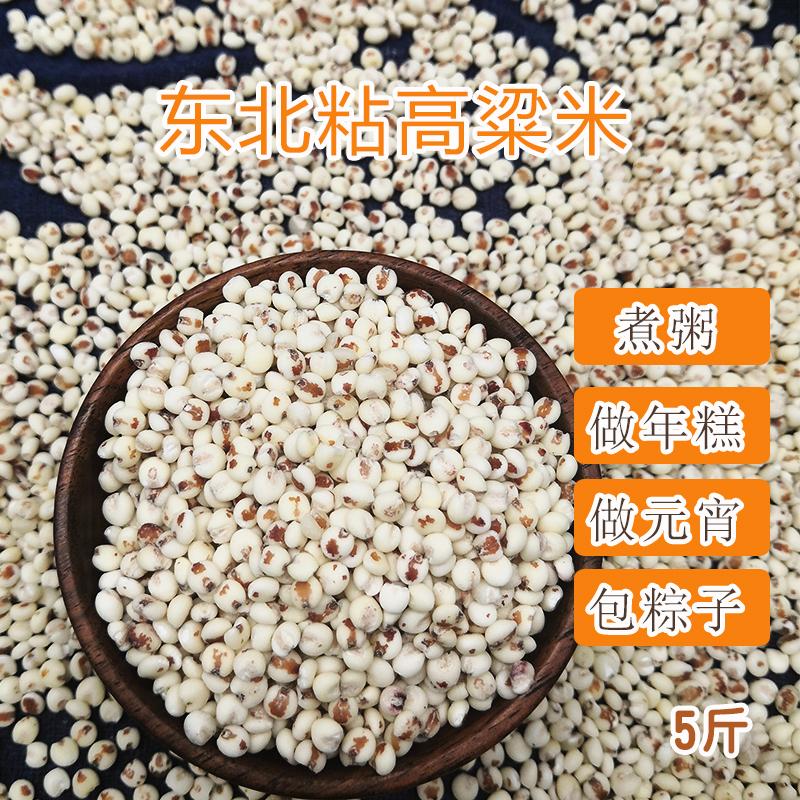 特粘新货粘高粱米5斤 东北特产农家自种黏糯包粽子粗粮脱皮红高粱