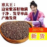 2017 новый Семена северо-восточной перильи 500 г сырых семян периллы жирной пены барбекю приправы